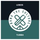 Tumba by Los Lobos