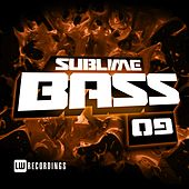 Sublime Bass, Vol. 09 - EP by Various Artists