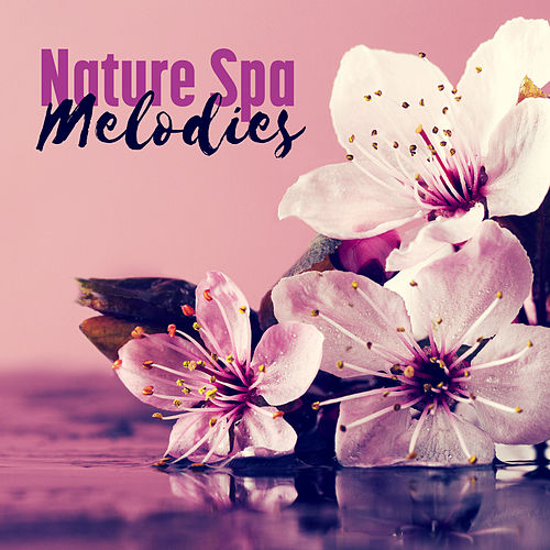 Nature Spa Melodies by Sounds Of Nature