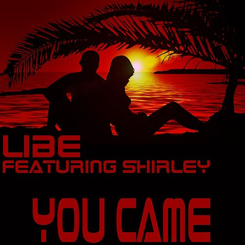 You Came by Libe