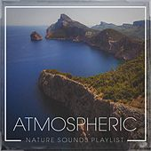 Atmospheric Nature Sounds Playlist by Echoes of Nature