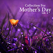 Collection For Mother's Day, vol. 2 by Various Artists