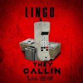 They Callin de Lingo