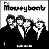 Fools Like Me von The Merseybeats