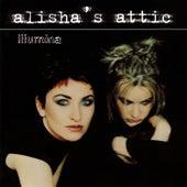 Illumina by Alisha's Attic
