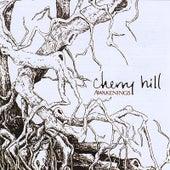 Awakenings by Cherry Hill