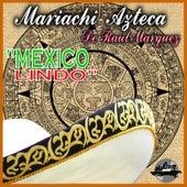 Mexico Lindo by Mariachi Azteca De Raul Marquez
