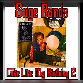 Cake Like My Birthday 2 by Suge Bands