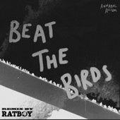 Beat the Birds von Annabel Allum