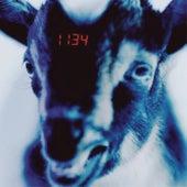 1134 by GASHI