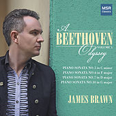 A Beethoven Odyssey, Vol. 5 de James Brawn