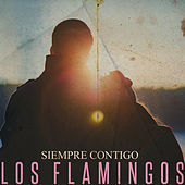 Siempre Contigo de The Flamingos