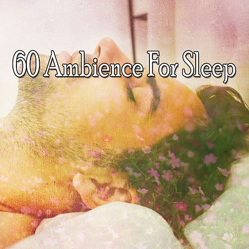 60 Ambience For Sleep de The Rest