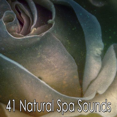 41 Natural Spa Sounds by S.P.A