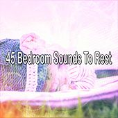 45 Bedroom Sounds To Rest by Bedtime Baby