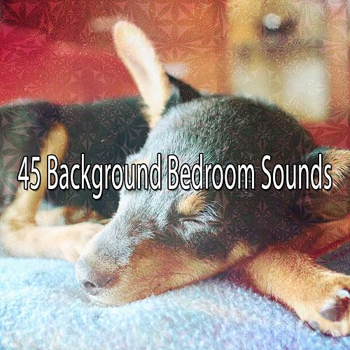 45 Background Bedroom Sounds by Sounds Of Nature