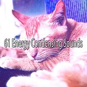 61 Energy Condensing Sounds by Ocean Sounds Collection (1)