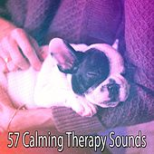 57 Calming Therapy Sounds von Best Relaxing SPA Music