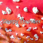 Sleepy Thunder de Thunderstorm Sleep