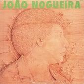 Pelas Terras Do Pau-Brasil de João Nogueira
