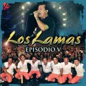 Episodio V (En Vivo) de Los Lamas