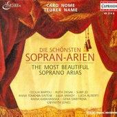 Opera Arias - MOZART, W. A. / BELLINI, V. / VERDI, G. / ROSSINI, G. / GOUNOD, C. / MASSENET, J. / PUCCINI, G. / SCHMIDT, F. / WAGNER, R. de Various Artists