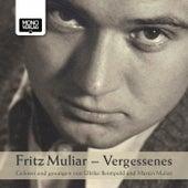 Vergessenes (Gelesen und gesungen von Ulrike Beimpold und Martin Muliar) by Fritz Muliar, Markus Muliar, Clemens Sainitzer, Daniel Schober