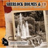 Folge 36: Der Jungbrunnen, Episode 1 von Sherlock Holmes & Co