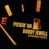 Pickin' On Buddy Jewell: A Bluegrass Tribute by Pickin' On