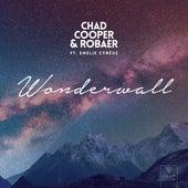 Wonderwall by Robaer