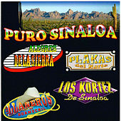 Puro Sinaloa by Various Artists