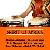 Spirit of Africa de Various Artists
