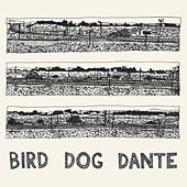 Bird Dog Dante by John Parish