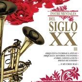 Instrumentales del Siglo XX, Vol. 3 de Various Artists