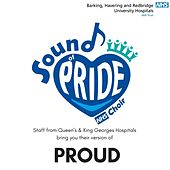 Proud de Sound of Pride NHS Choir