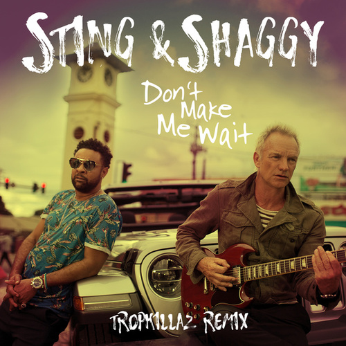 Don't Make Me Wait (Tropkillaz Remix) by Shaggy
