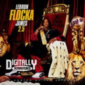 LeBron Flocka James 2.5 by Waka Flocka Flame