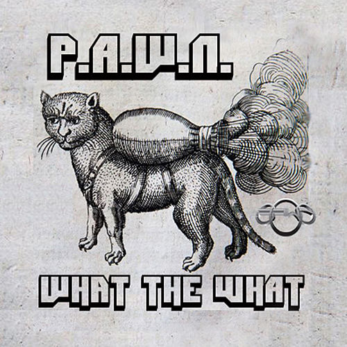 What the What by DJ Pawn