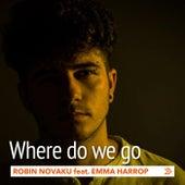 Where Do We Go by Robin Novaku