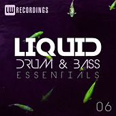 Liquid Drum & Bass Essentials, Vol. 06 - EP by Various Artists