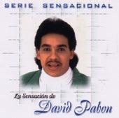 Serie Sensacional by David Pabon