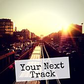 Your Next Track, Vol. 13 by Various Artists