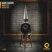 Imbecile by Mark Sherry