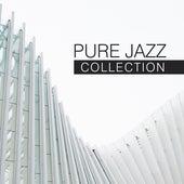 Pure Jazz Collection de Acoustic Hits
