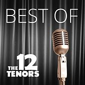 Best Of de The 12 Tenors