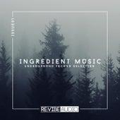 Ingredient Music, Vol. 1 by Various Artists