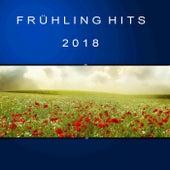 Frühling Hits 2018 von Various Artists