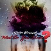 What Do You Mean? de Malin Horsevik