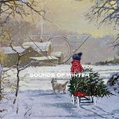 Sounds of Winter by Captain E