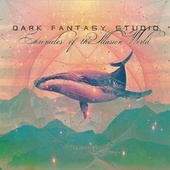 Chronicles of the illusion world de Dark Fantasy Studio